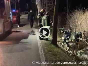 Mogliano Veneto, aggredita mentre fa jogging video - Corriere della Sera