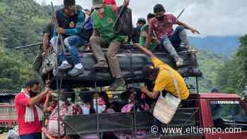 Indígenas embera desplazados retornan a Bagadó, Chocó - El Tiempo