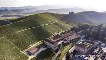 Vino verde di Fontanafredda all'insegna della sostenibilità - Time Magazine