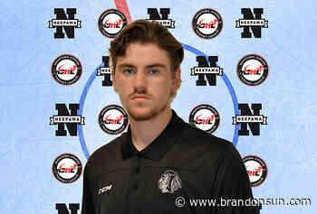 Neepawa grads reminisce on hockey careers - Brandon Sun