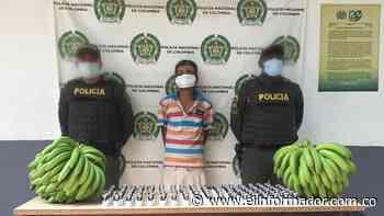 Capturan a alias 'El Ruso' por hurto en Riofrío, Zona Bananera - El Informador - Santa Marta