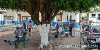 Empleados de alcaldías de Tecoluca y San Pedro Perulapán suspenden labores por salarios adeudados - La Prensa Grafica
