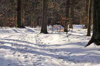 HARZ: WINTERWANDERUNG UM FRIEDRICHSBRUNN - Thale - myheimat.de