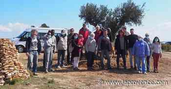 Vitrolles : l'Oliveraie solidaire a encore planté sur le plateau - La Provence