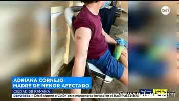 Varios heridos por incidentes con monos en isla de Portobelo - TVN Panamá
