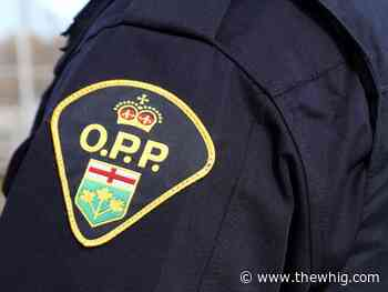 OPP investigating fatal collision in Greater Napanee - The Kingston Whig-Standard