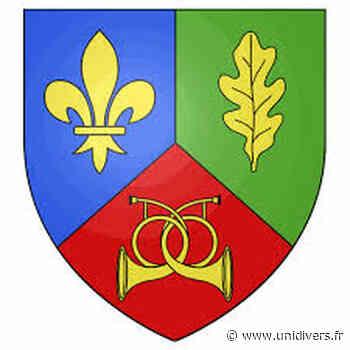 Cérémonie de voeux – Les Essarts-le-Roi En visioconférence Rambouillet - Unidivers