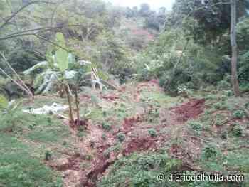Fuertes lluvias en Timaná podrían generar represamiento en las quebradas - Diario del Huila