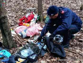 Merone, giro di spaccio di droga nei boschi, quattro arresti - Lecco Notizie