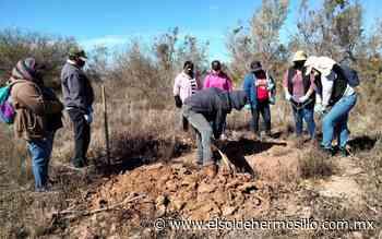 Localizan Madres Buscadoras de Sonora restos humanos en Nogales - El Sol de Hermosillo