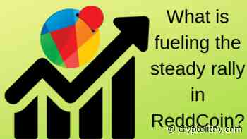 ReddCoin (RDD) News - What is fueling the steady rally in ReddCoin (RDD)? - Cryptolithy.com