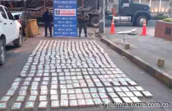 Incautan más de 440 kilogramos de clorhidrato de cocaína en Yotoco, Valle del Cauca - Extra Palmira
