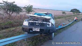 Vehículo chocó con una vaca en la vía Bosconia - Fundación - EL HERALDO