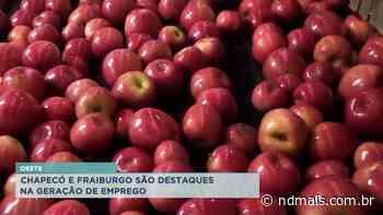 Oeste: Chapecó e Fraiburgo são destaques na geração de emprego - ND