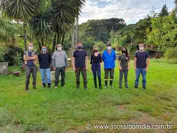 Notícias   Notícias: monitoramento-de-primatas-em-sao-jose-do-ouro - Jornal Bom Dia
