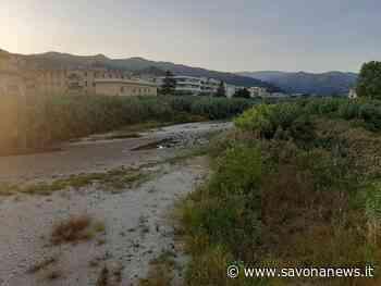 Albissola Marina: contributo ministeriale da 915mila euro per la messa in sicurezza del Sansobbia - SavonaNews.it