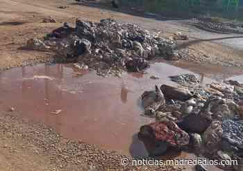 Vecinos denuncian que vehículo del municipio de Tambopata dejó restos de camal en la vía pública - Radio Madre de Dios