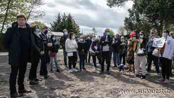 Vidéo. Cadaujac : face-à-face entre le propriétaire du cimetière animalier et les concessionnaires - Sud Ouest