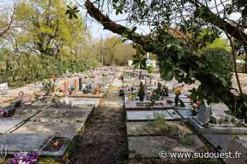 Gironde : dans le cimetière animalier de Cadaujac, ils s'étaient fait enterrer avec leurs chiens et leurs chats - Sud Ouest