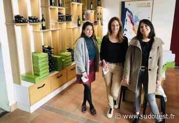 Médoc : la cave coopérative La Rose Pauillac se prépare à ouvrir ses portes - Sud Ouest