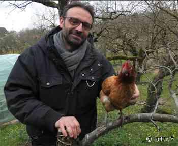 Yvelines. Gaillon-sur-Montcient : une association facilite le sauvetage de 300 poules pondeuses - actu.fr