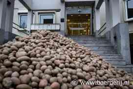 Nieuwsfoto's: Aardappelen op de stoep - Boerderij