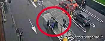 Seriate, donna rapinata di 30 mila euro con spray al peperoncino, due arresti- Video - L'Eco di Bergamo