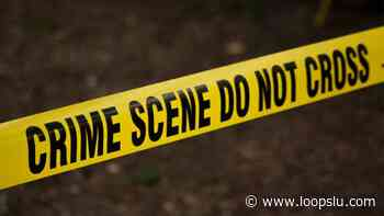 Man found shot in the head near Beausejour, Gros Islet - Loop News St. Lucia