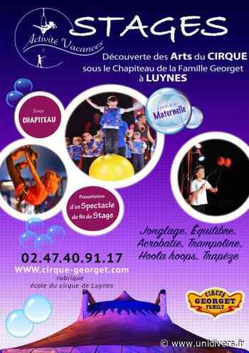 Stage de cirque Luynes - Unidivers