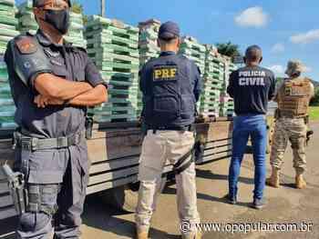 Uma tonelada de maconha é apreendida em Aragarças; droga iria para Goianira e Anápolis - O Popular