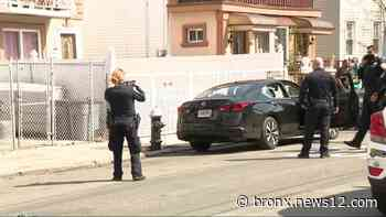 Police: Man dies from multiple gunshot wounds in East New York - News 12 Bronx