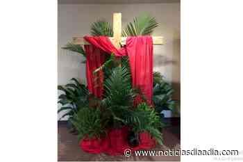 Plantas ornamentales para el Domingo de Ramos en Cajicá, Cundinamarca - Noticias Día a Día