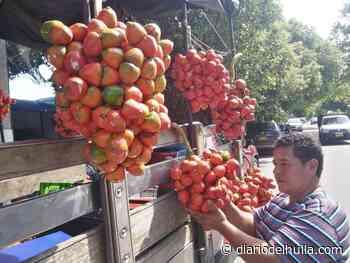 Chontaduro o cachipay, fruta tropical que está de moda en Neiva - Diario del Huila