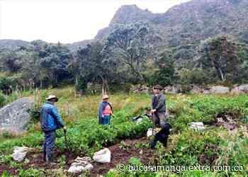 Agricultores de Villapinzón recibieron asesoría para asegurar sus cosechas - Extra Bucaramanga