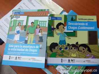 Niños de Támara y Nunchía se informaron sobre la enfermedad del Chagas - Noticias de casanare   La voz de yopal - La Voz De Yopal