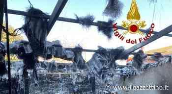 Incendio in una legnaia a Marano, sterpaglie in fiamme a Torrebelvicino Foto - ilgazzettino.it