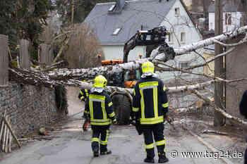 Annaberg-Buchholz: Baum kracht auf Straße, mehrere Häuser ohne Strom - TAG24