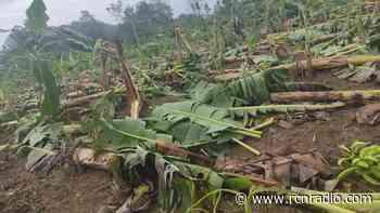 Vendaval destruyó techos de casas y arrasó cultivos en Tierralta, Córdoba - RCN Radio
