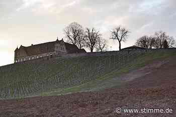 Wahrzeichen in Untergruppenbach rückt näher - STIMME.de - Heilbronner Stimme