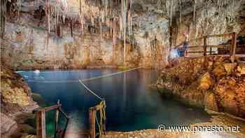 Cenote Palomita, el ojo de agua más grande en Yucatán - PorEsto