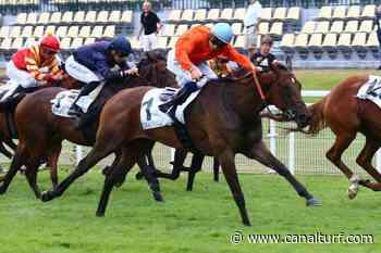 Pronostic gratuit Quinté+ Pmu Prix Hubert de Catheu, mardi à Fontainebleau. FUNNY VALENTINE n'est pas là pour s'amuser... - Canal Turf