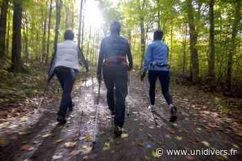 Le BungyPump à découvrir – Séance Découverte Foret de Meudon (Étang de Chalais) Meudon - Unidivers