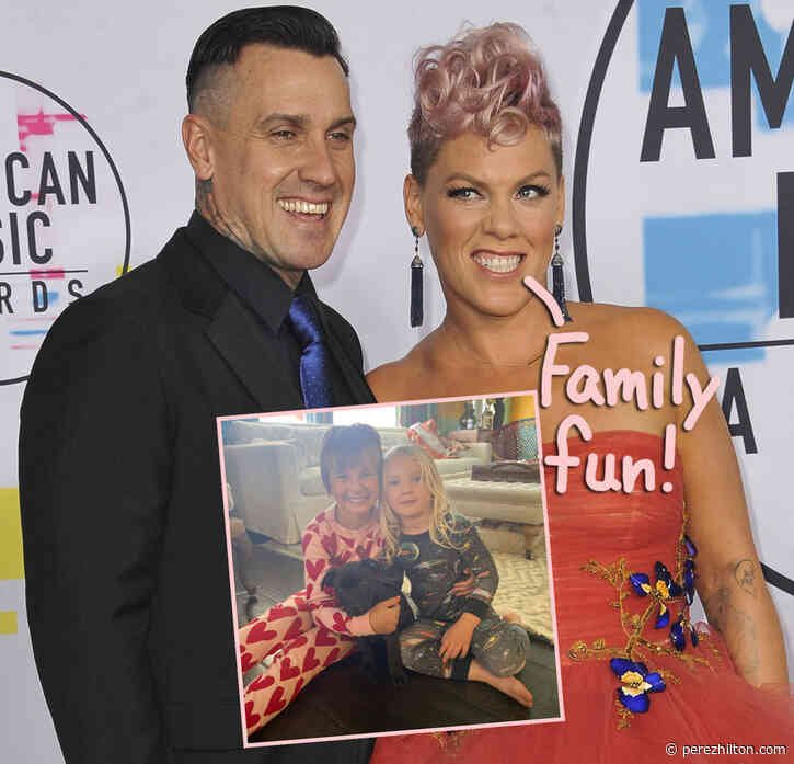 Pink's Rescue Pup -- See Her Family's Adorably Furry New Member HERE!