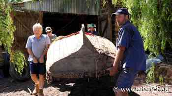 'There's nothing like it': 136-year-old lifeboat found in hay shed rafters