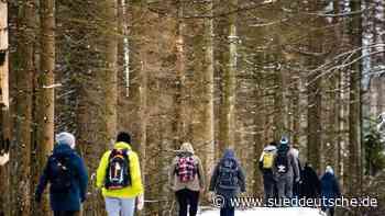 Neuschnee im Harz: Weiße Pracht nur von kurzer Dauer - Süddeutsche Zeitung