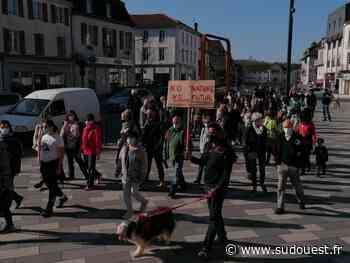 Orthez : une marche pour le climat rassemble une cinquantaine de personnes - Sud Ouest
