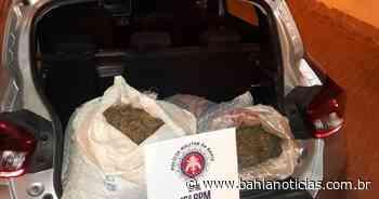 Serrinha: Motorista de aplicativo é flagrado com 40 kg de maconha - Bahia Notícias