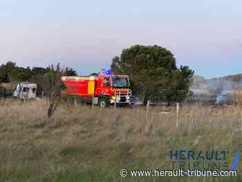 Un feu de caravanes ravage deux hectares sur la commune d'Agde - Hérault-Tribune