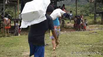 Más de 200 familias de indígenas recibieron ayuda humanitaria en Dabeiba - Telemedellín