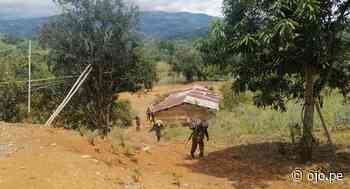 'Sinchis de Mazamari' ubican narcocaleta con 184 kilos de coca en Ayacucho - Diario Ojo